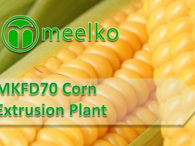 Moringa MKFD70 Extrusion Plant