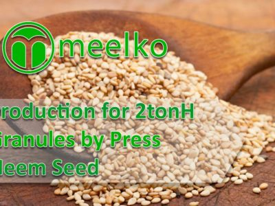 Production for 2tonH Granulated Sesame Seed