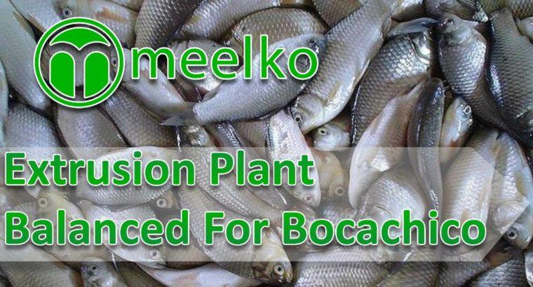 Balanced Extrusion Plant For BOCACHICO