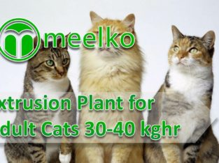 Extrusion Plant for Adult Cats 30-40 kghr
