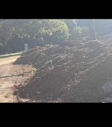 ***MATTHEWS MULCH**PICKUP AND DELIVERY***24/7!!!