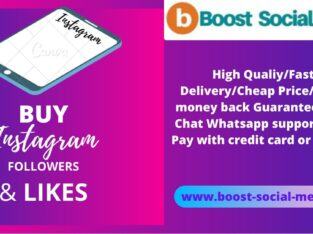 Buy Instagram Followers & Likes