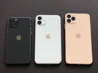 IPhone 11 and 11 pro max