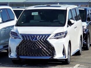 Lexus pm me on Whatsapp +18453930360