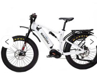Mule Bike