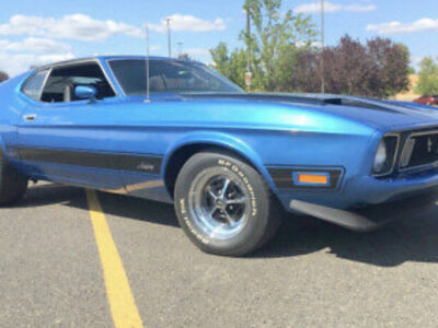 1973 Ford Mustangs