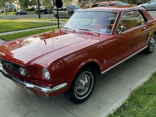 1965 Ford Mustangs