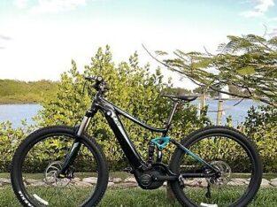 Liv EMBOLDEN E+ 2 POWER Electric Bike2019 Mountain